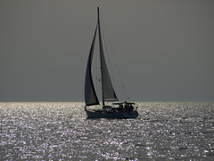 Up the wind (RoniM) Tags: sunset sea sailboat island sailing croatia roni bol brac adriatic 2007 dalmatia e510 interestingness71 marinkovic ronimarinkovic
