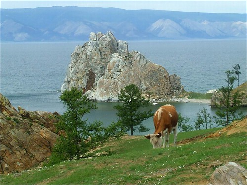 Shaman Rock por lupus83.
