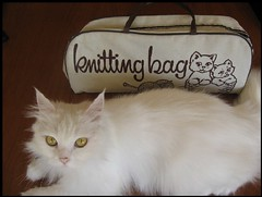 Matilde and my new knitting bag