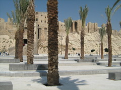 Aleppo Citadel New Look