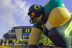 Eugene Oregon Ducks