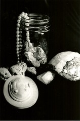 still life, acquired objects (osteffich) Tags: pearls quartz turtleshell
