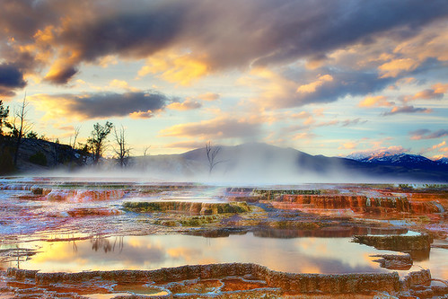 Yellowstone National Park-Mammoth Hot Springs