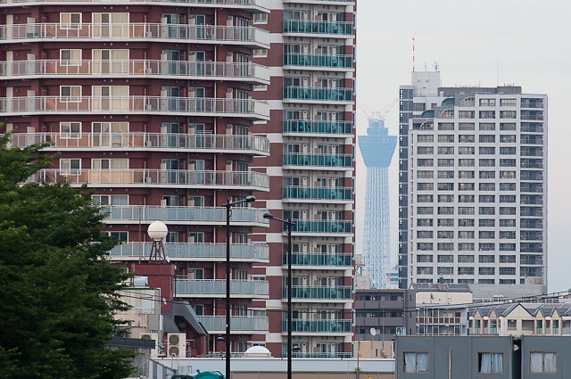 東中野の跨線橋から見える東京スカイツリー