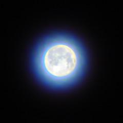moon_contest_01