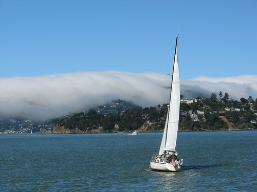 Fog bank over Sausalito