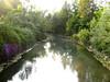 ciao fiume