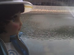lineman doll watches the ducks