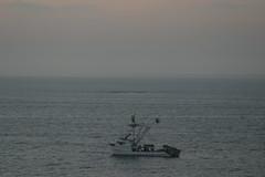 trawler and shark pen