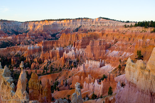 Dawn colors at Bryce Canyon