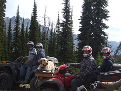Sep3 07_Quading in Jaffray (20)