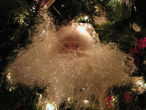 Christmas 2008 015