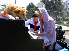 Traveling Piano Players (TravelingPianoMan) Tags: street city urban music usa dog canada rural america truck newfoundland out mexico fun outside outdoors friendship random unique live united country piano pickup player novelty improvisation danny hanging boner daytime states traveling impromptu mydog spontaneous synchronicity kean spontaneity my