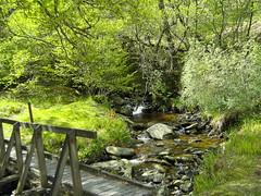 Any Trolls? (Bricheno) Tags: bridge scotland stream escocia glen bishops szkocja schottland dunoon scozia cosse cowal bishopsglen  esccia   bricheno scoia