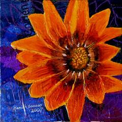African Daisy (HamishLawson) Tags: flower art painting screensaver african daisy