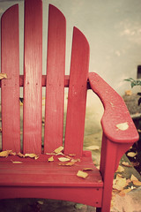Autumn has fallen onto my summer chair (*Cinnamon) Tags: autumn red nikond70s nikkor adirondack 50mmf14d vintagefilmaction soocexceptfortheappliedaction