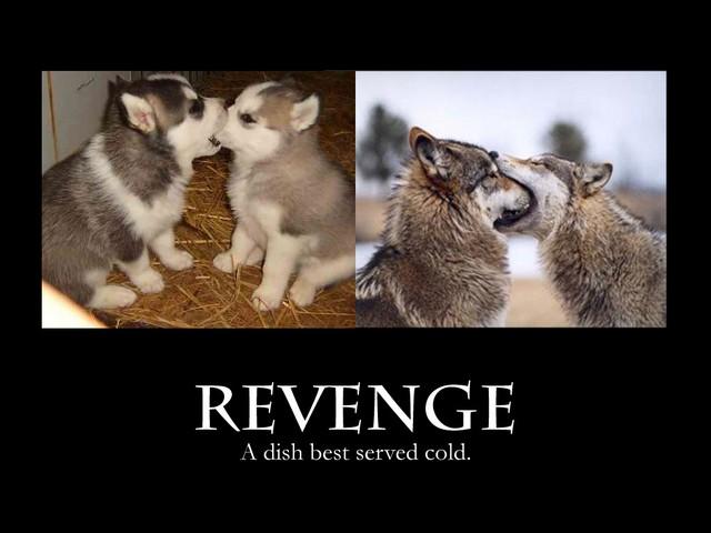 revenge_small.jpg
