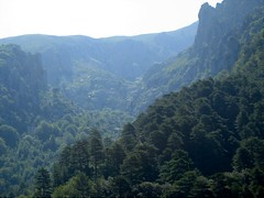 La partie basse du ravin de Coracchia depuis le sentier d'Oreccia