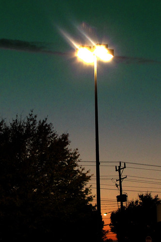 Picture Fall Day 22: Darks and Lights