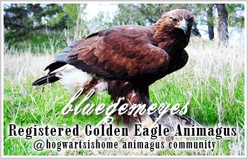 golden eagle banner