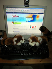 Mozilla Firefox 2 e due Firefox