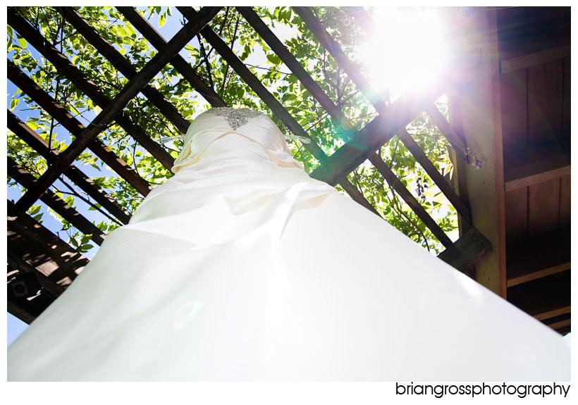 dresshanging1