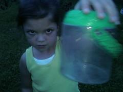 Catching fireflys
