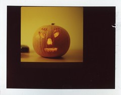 Happy Halloween (oceanheadted) Tags: t back hasselblad 1m planar polariod 80mm 500cm proxar fujifp100c