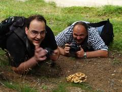 szenvedély / passion (.e.e.e.) Tags: people plants nature mushroom olympus e400