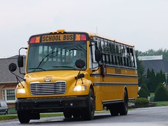 Weird School Bus