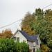 ci sono posti dove dagli alberi spuntano le case (Hawthorne District, Portland, OR)