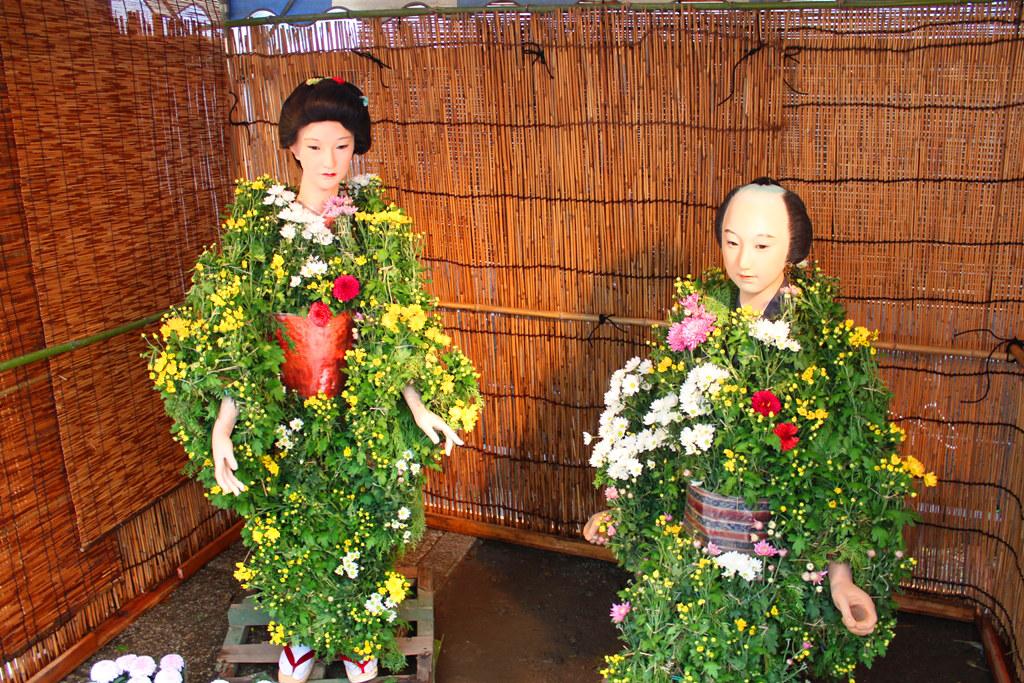 Yanaka Chrysanthemum Festival (2)