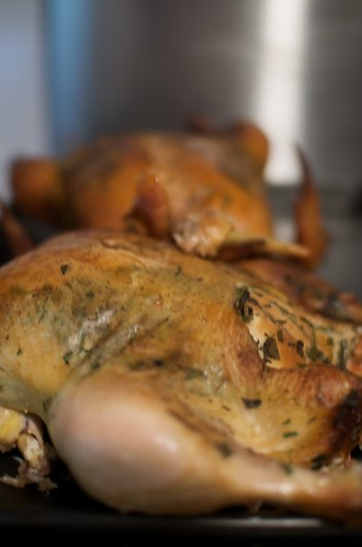 Smoked chickens for risotto