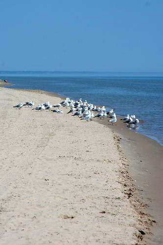 Point Beach