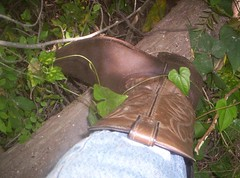 Vines Attack Cowboy Boot