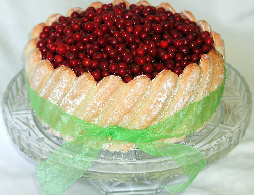 red currant charlotte