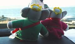 Babar and Celeste make it to the Sound (catwommn) Tags: seattle pugetsound babar celeste seahurstpark catcalhoun