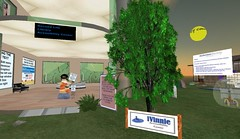 SL Accessibility Center, HealthInfo Island
