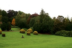 Heriot Watt First Impression  011.jpg