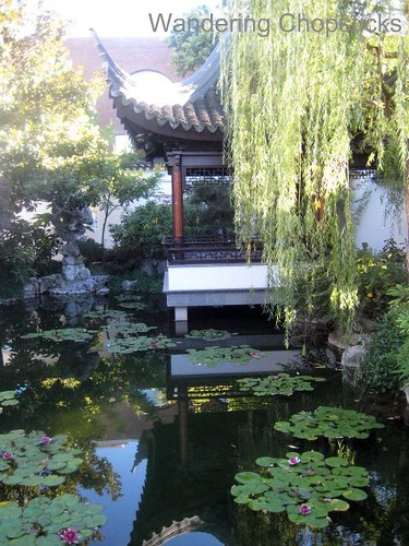 Day 4.12 Lan Su Chinese Garden (Portland Classical Chinese Garden) - Portland - Oregon 32