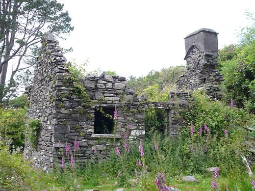 irish famine houses