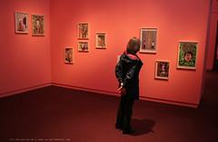 documenta 12 | Ines Doujak / Siegesgärten | 2007 | Neue Galerie