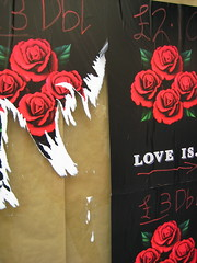 Love is --> (alixanaeuphoria) Tags: city roses wallpaper love glasgow events posters torn