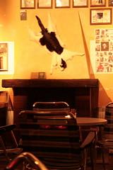 03.01.2007 - im Cabaret Voltaire