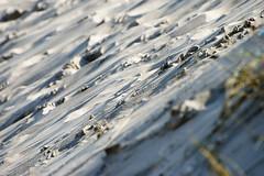 (abbilder) Tags: germany deutschland warnemünde nikon raw balticsea baltic ostsee mv vorpommern mecklenburg mecklenburgvorpommern adobelightroom abbilder wwwabbildercom