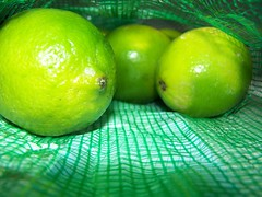 guess what they're for? (Little Grey) Tags: green lime freenature sosimplesobeautiful randomartaward lifeingreen colourartaward bicul juicyfruits thefireflag