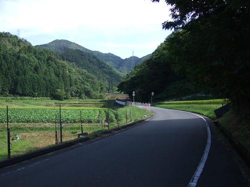峠越えへの道