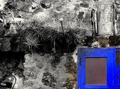 Azul de otro tiempo (Casa Cho Juan) Tags: blue house window azul ventana pared casa canarias bleu tenerife maison canaryislands fenetre piedra turismorural clavel laguancha verode ventanuco bejeque casachojuan claveldeaire