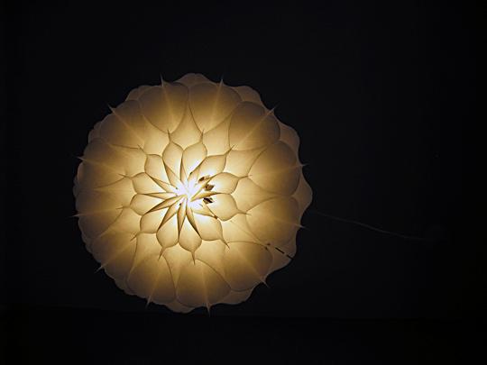 Phrena hanging lamp MOMA +bottom+sharp