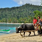 Port Barton: Wanderings in a Coastal Village in Palawan